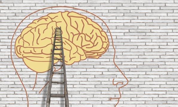 brain-3535300_960_720
